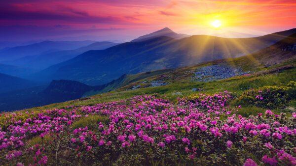 Тури до найкрасивіших локацій України